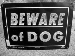 beware_dog